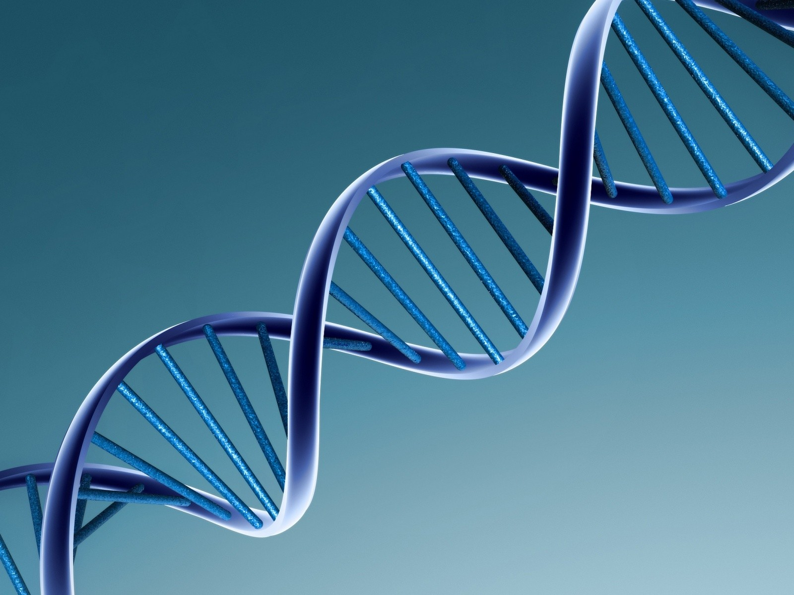 New study hints at why infamous gene variant increases odds of developing Alzheimer's disease
